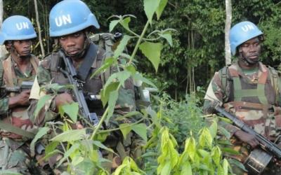 Arrêtez de tuer vos frères : message de la Conférence épiscopale du Congo RD